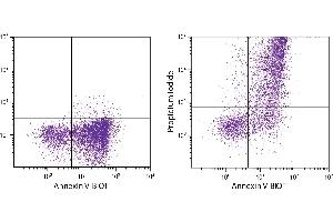 Image no. 1 for Aposcreen Annexin V-UNLB (ABIN377006)