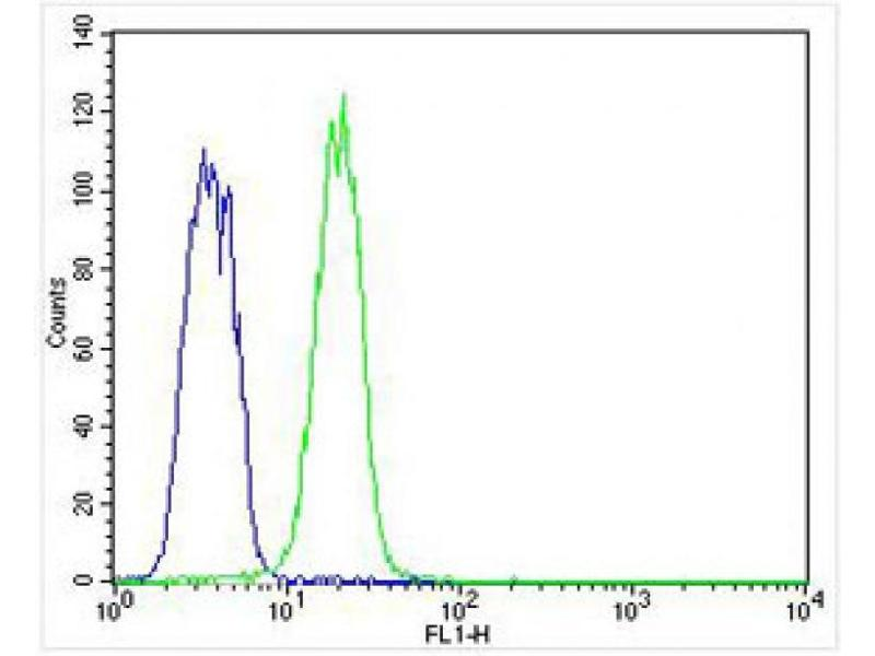 Flow Cytometry (FACS) image for anti-Keratin 12 (KRT12) (AA 442-471), (C-Term) antibody (ABIN656663)