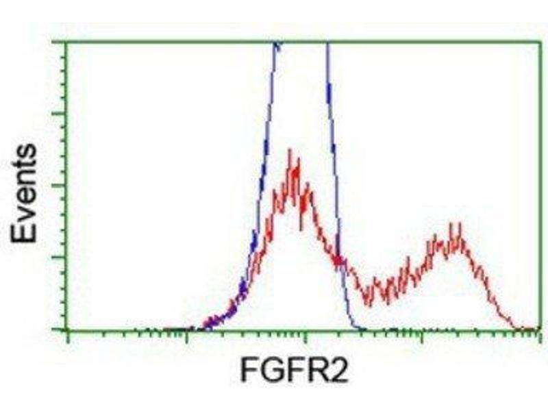 Flow Cytometry (FACS) image for anti-Fibroblast Growth Factor Receptor 2 (FGFR2) antibody (ABIN4311538)