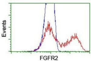 Flow Cytometry (FACS) image for anti-FGFR2 antibody (Fibroblast Growth Factor Receptor 2) (ABIN4311538)
