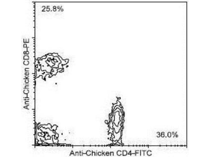 Flow Cytometry (FACS) image for anti-CD8a Molecule (CD8A) (Chain alpha) antibody (ABIN440229)