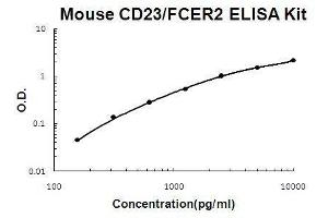 Image no. 1 for Fc Fragment of IgE, Low Affinity II, Receptor For (CD23) (FCER2) ELISA Kit (ABIN3044698)
