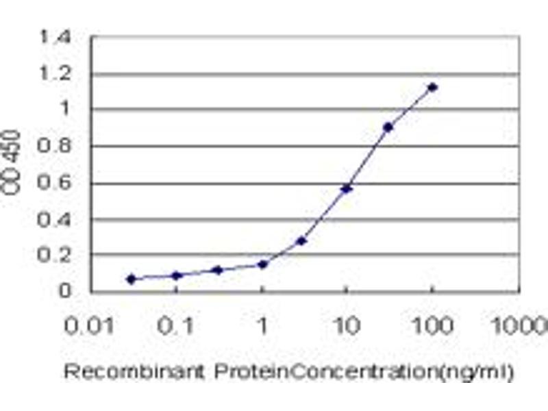 ELISA image for anti-RAR-Related Orphan Receptor B (RORB) (AA 136-224), (partial) antibody (ABIN562677)