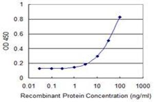 Image no. 2 for anti-Sulfotransferase Family 4A, Member 1 (SULT4A1) (AA 1-100) antibody (ABIN525453)