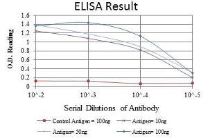 ELISA image for anti-MAPK3 antibody (Mitogen-Activated Protein Kinase 3) (ABIN969277)