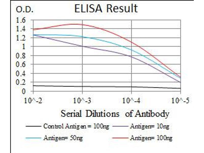 image for anti-Sonic Hedgehog (SHH) (AA 26-161) antibody (ABIN1491290)
