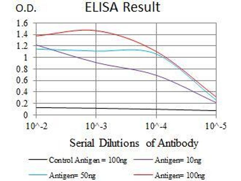 ELISA image for anti-Calcium/calmodulin-Dependent Protein Kinase IV (CAMK4) (AA 35-292) antibody (ABIN1098144)