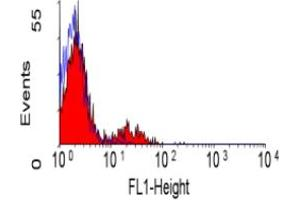 Flow Cytometry (FACS) image for anti-Ectonucleoside Triphosphate diphosphohydrolase 1 (ENTPD1) antibody (FITC) (ABIN118625)