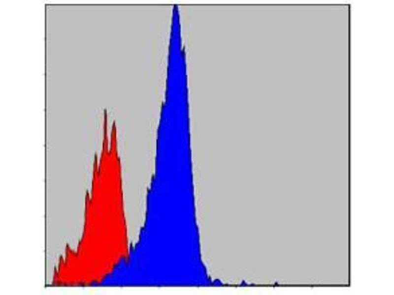 Flow Cytometry (FACS) image for anti-V-Crk Sarcoma Virus CT10 Oncogene Homolog (Avian)-Like (CRKL) antibody (ABIN969064)