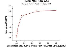 Image no. 1 for Angiotensin I Converting Enzyme 2 (ACE2) protein (Fc Tag) (ABIN6952465)