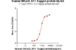 Image no. 1 for Natural Cytotoxicity Triggering Receptor 3 (NCR3) protein (Fc Tag) (ABIN6961135)