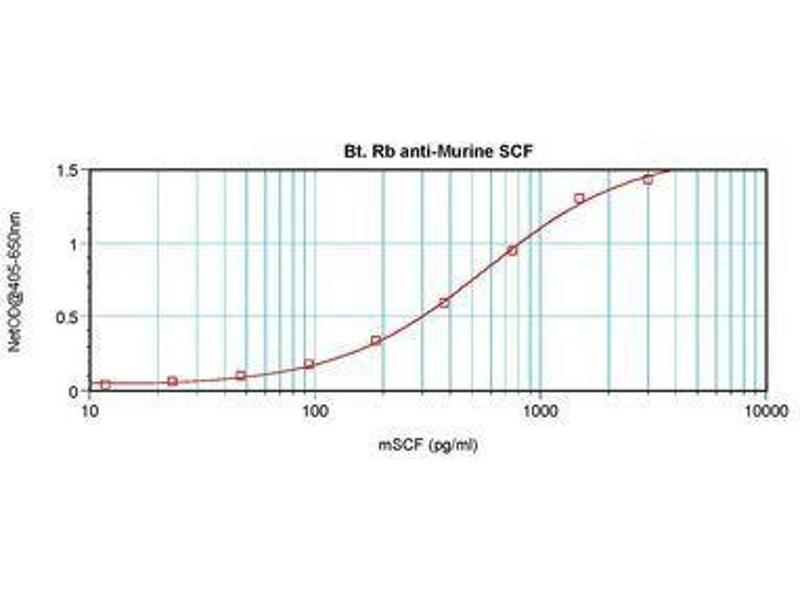 image for anti-KIT Ligand antibody (KITLG)  (Biotin) (ABIN465802)