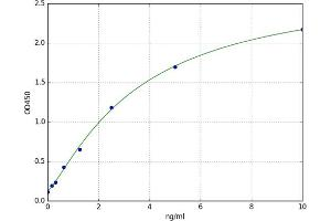 Image no. 1 for Family with Sequence Similarity 20, Member C (FAM20C) ELISA Kit (ABIN5523255)