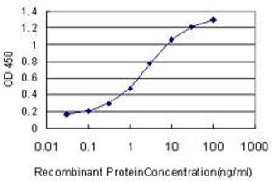 Image no. 1 for anti-Mediator Complex Subunit 8 (MED8) (AA 1-59) antibody (ABIN566701)