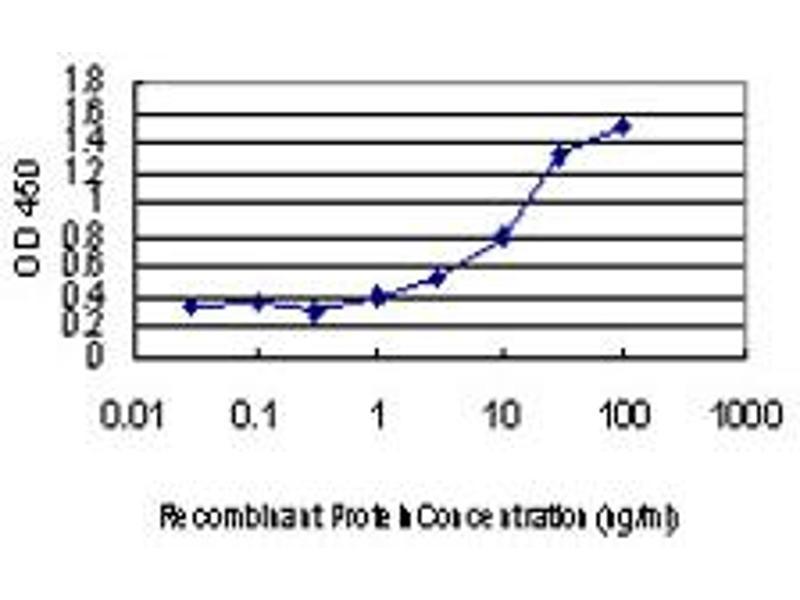ELISA image for anti-MAP Kinase Interacting serine/threonine Kinase 1 (MKNK1) (AA 1-465), (full length) antibody (ABIN563698)