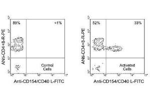 Flow Cytometry (FACS) image for anti-CD40 Ligand antibody (CD40LG)  (FITC) (ABIN439957)