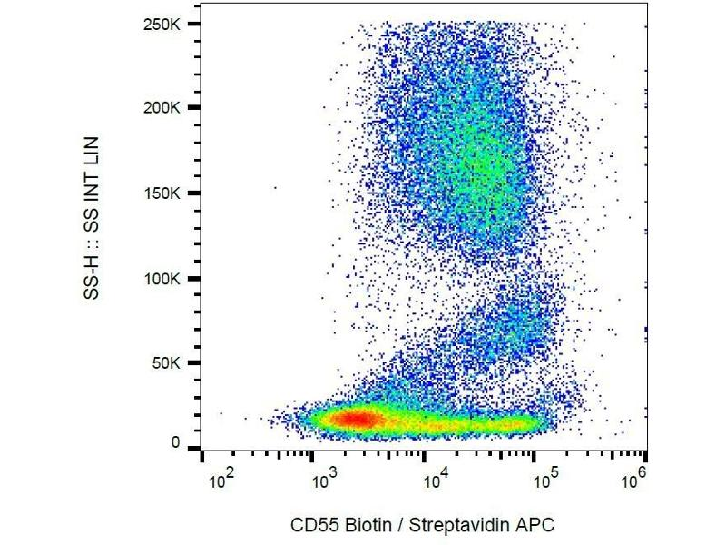 Flow Cytometry (FACS) image for anti-Complement Decay-Accelerating Factor (CD55) (Domain SCR4) antibody (Biotin) (ABIN94184)