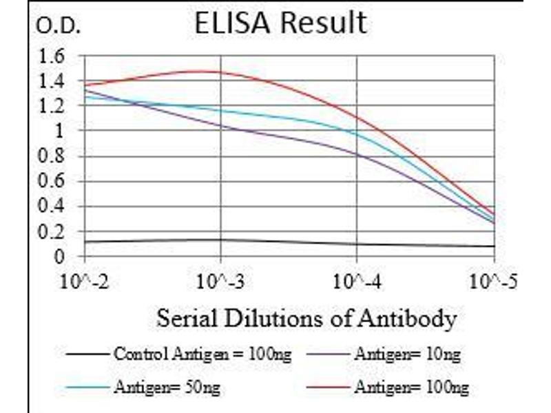 Image no. 4 for anti-Caudal Type Homeobox 2 (CDX2) (AA 176-303) antibody (ABIN1724921)