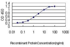 Image no. 3 for anti-Centrin, EF-Hand Protein, 3 (CETN3) (AA 1-100) antibody (ABIN560341)