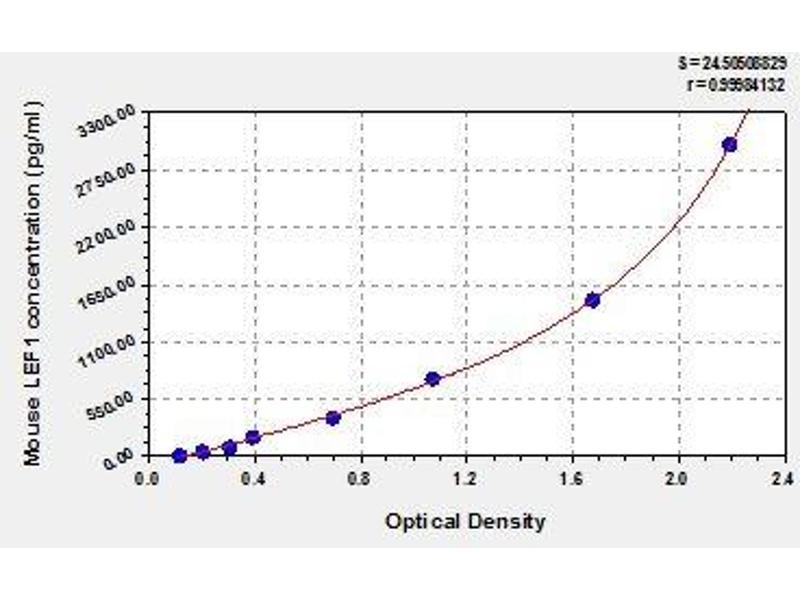 Lymphoid Enhancer-Binding Factor 1 (LEF1) ELISA Kit