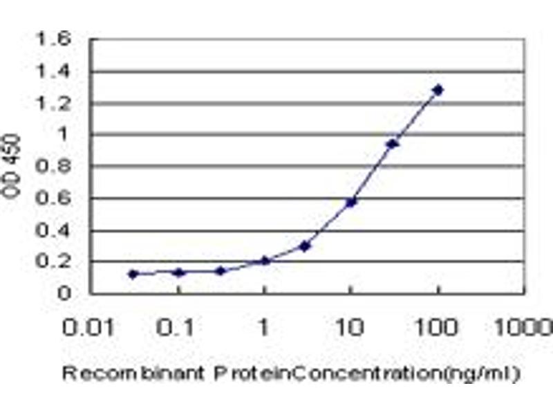 Image no. 3 for anti-Interleukin-1 Receptor-Associated Kinase 4 (IRAK4) (AA 1-130) antibody (ABIN599243)