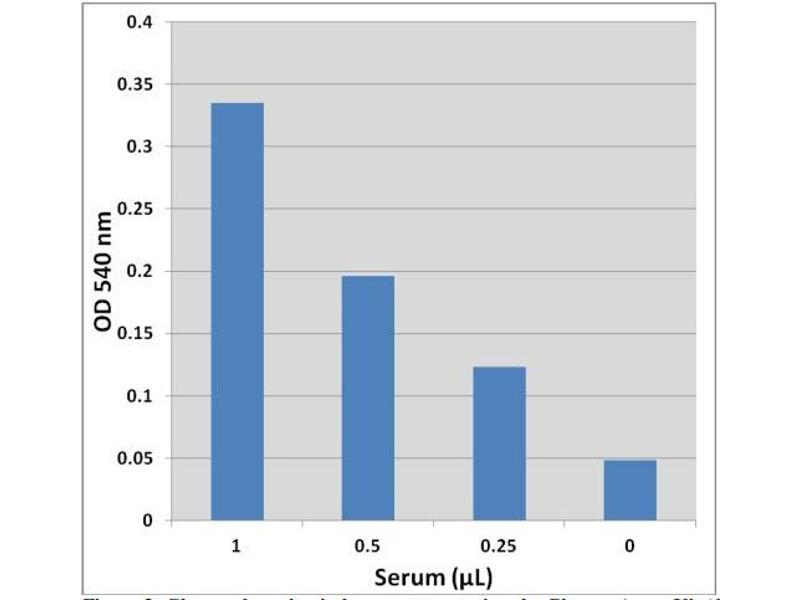 Biochemical Assay (BCA) image for Glucose Assay Kit (Colorimetric) (ABIN5067615)