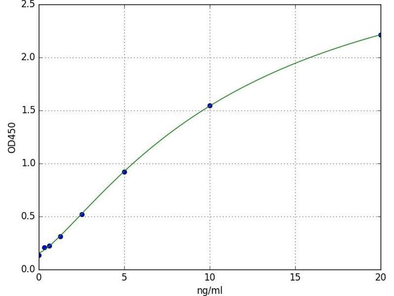 Estrogen-Related Receptor gamma (ESRRG) ELISA Kit