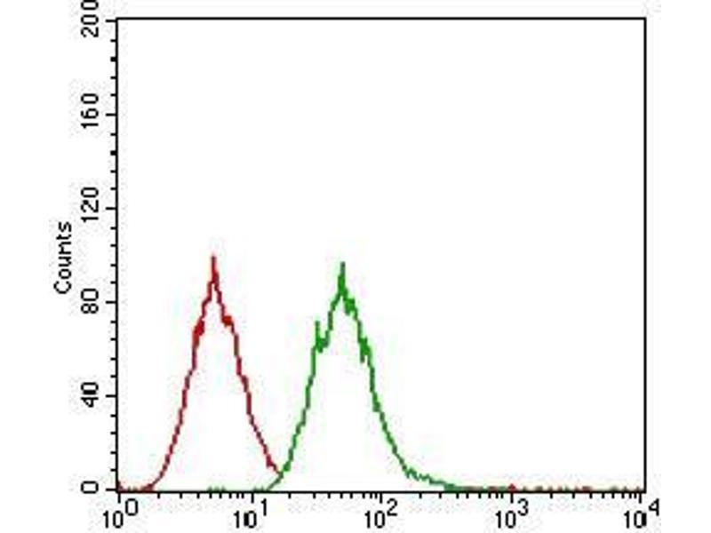 Flow Cytometry (FACS) image for anti-Epidermal Growth Factor Receptor (EGFR) (AA 693-893) antibody (ABIN1724890)