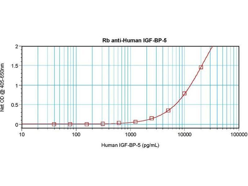 Enzyme Immunoassay (EIA) image for anti-Insulin-Like Growth Factor Binding Protein 5 (IGFBP5) antibody (ABIN181656)