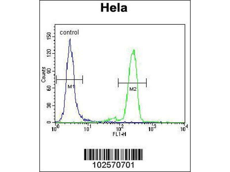 Flow Cytometry (FACS) image for anti-PML antibody (Promyelocytic Leukemia) (Sumoylation Site) (ABIN2495224)