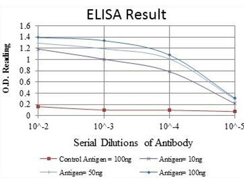 ELISA image for anti-Glutamate Receptor 3 antibody (Glutamate Receptor, Ionotrophic, AMPA 3) (ABIN1107384)