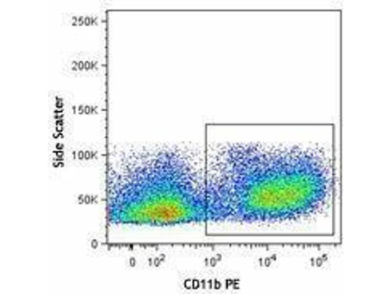 Flow Cytometry (FACS) image for Mouse MDSC Flow Cocktail 2 (ABIN2669223)