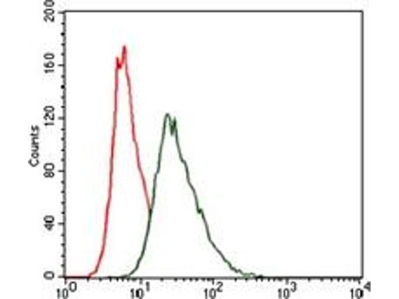 Flow Cytometry (FACS) image for anti-Heat Shock Transcription Factor 4 (HSF4) antibody (ABIN1107497)