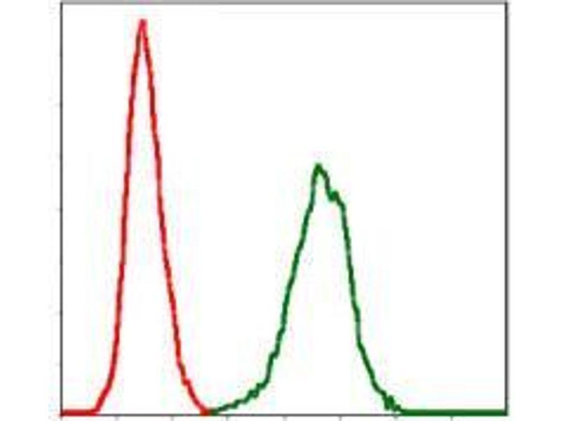 Flow Cytometry (FACS) image for anti-SERPINE1 antibody (serpin Peptidase Inhibitor, Clade E (Nexin, Plasminogen Activator Inhibitor Type 1), Member 1) (ABIN969566)