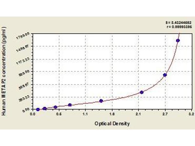 Methionyl Aminopeptidase 2 (METAP2) ELISA Kit