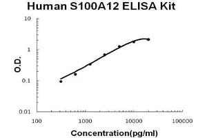 Image no. 1 for S100 Calcium Binding Protein A12 (S100A12) ELISA Kit (ABIN2859317)
