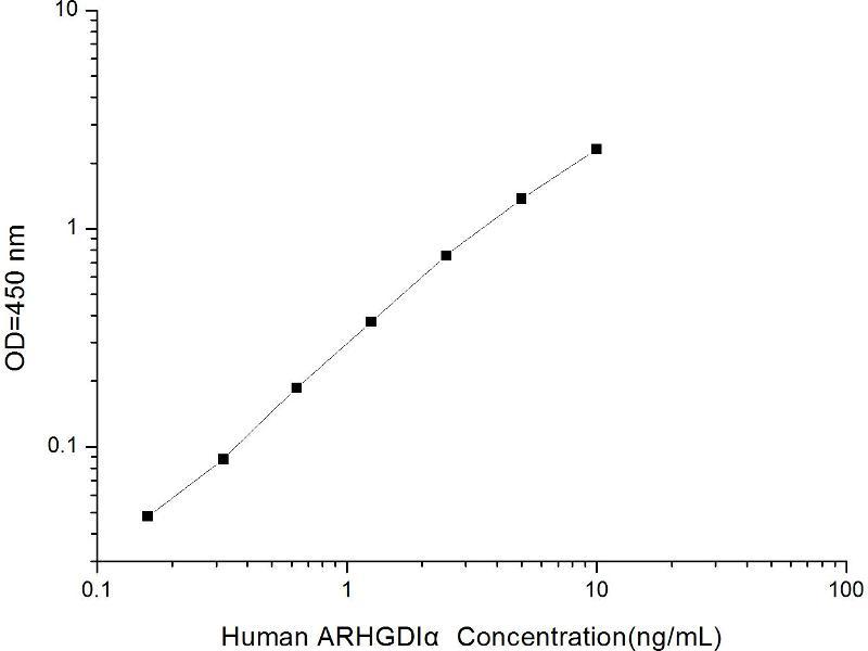 ELISA image for rho GDP Dissociation Inhibitor (GDI) alpha (ARHGDIA) ELISA Kit (ABIN1116965)