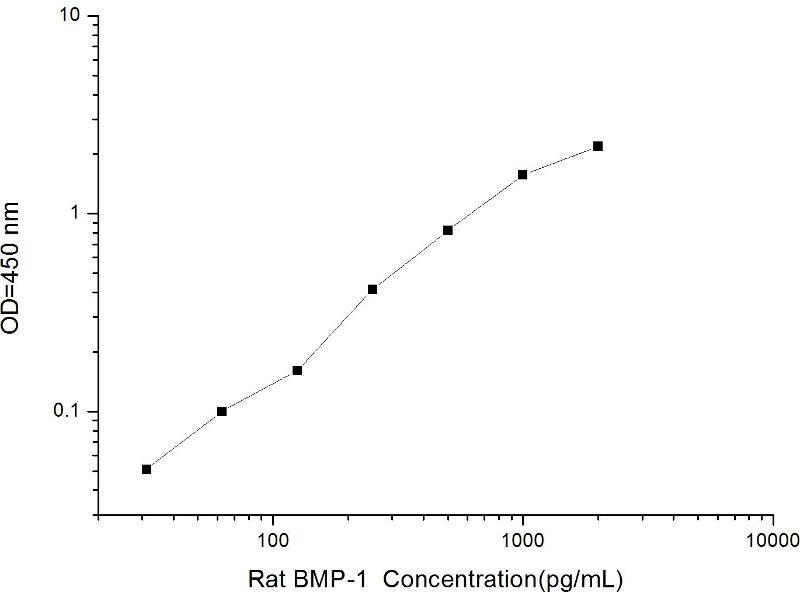 Bone Morphogenetic Protein 1 (BMP1) ELISA Kit (2)