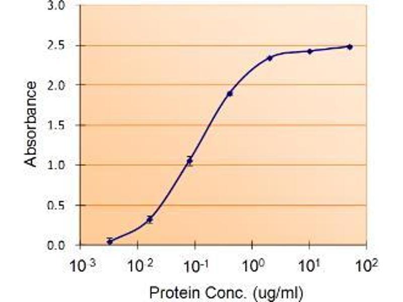 ELISA image for anti-SERPINE1 antibody (serpin Peptidase Inhibitor, Clade E (Nexin, Plasminogen Activator Inhibitor Type 1), Member 1) (ABIN2491319)