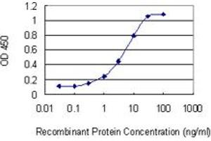 Image no. 1 for anti-rho-Related BTB Domain Containing 2 (RHOBTB2) (AA 510-619) antibody (ABIN525041)