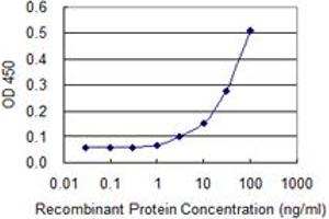 Image no. 4 for anti-Valosin Containing Protein (VCP) (AA 1-588) antibody (ABIN521309)