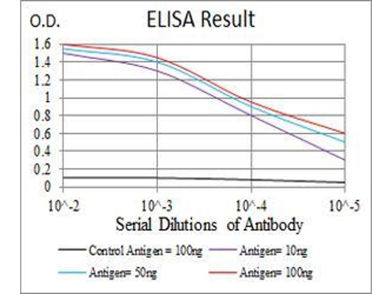 ELISA image for anti-Mitogen-Activated Protein Kinase Kinase Kinase 7 (MAP3K7) (AA 471-579) antibody (ABIN5542527)
