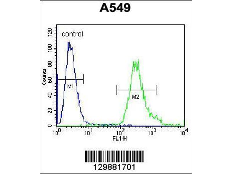 Flow Cytometry (FACS) image for anti-Sosondowah Ankyrin Repeat Domain Family Member D (SOWAHD) (AA 196-224), (C-Term) antibody (ABIN655785)