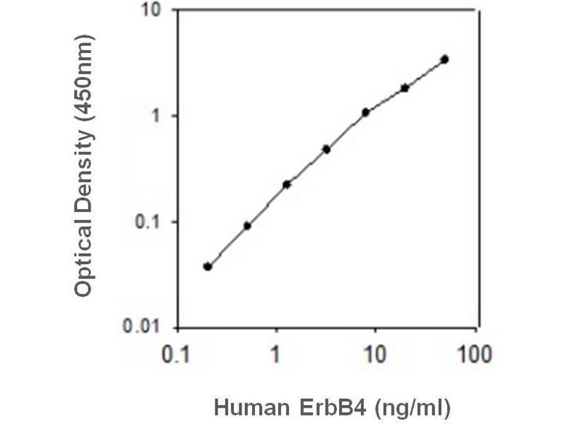 V-Erb-A erythroblastic Leukemia Viral Oncogene Homolog 4 (Avian) (ERBB4) ELISA Kit