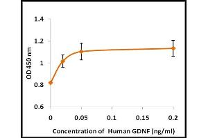 Image no. 1 for Glial Cell Line Derived Neurotrophic Factor (GDNF) (Active) protein (ABIN5509451)