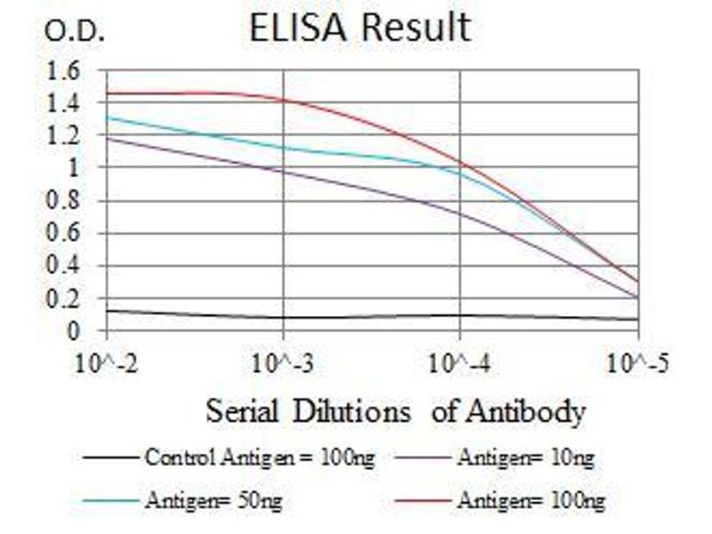 ELISA image for anti-Tubulin, alpha 8 (TUBA8) antibody (ABIN969446)