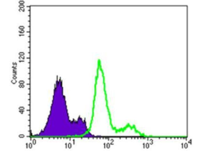 Flow Cytometry (FACS) image for anti-3-phosphoinositide Dependent Protein Kinase-1 (PDPK1) antibody (ABIN1844865)