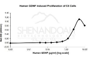 image for Glial Cell Line Derived Neurotrophic Factor (GDNF) (Active) protein (ABIN780532)