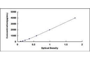 Image no. 4 for C-Reactive Protein (CRP) ELISA Kit (ABIN6574220)