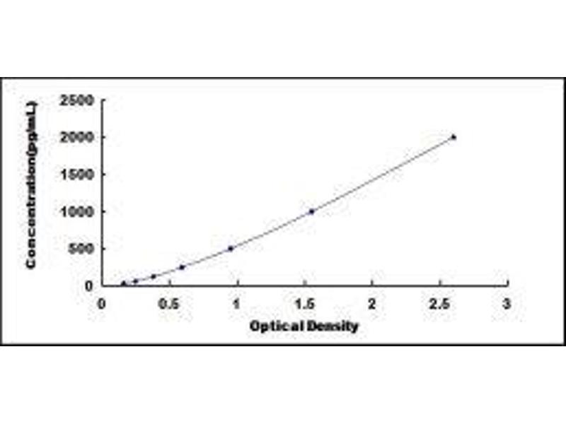 Cyclin-Dependent Kinase 16 (CDK16) ELISA Kit